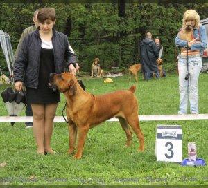 Чемпионат Бурбулей 9 мая 2012 года,  Москва